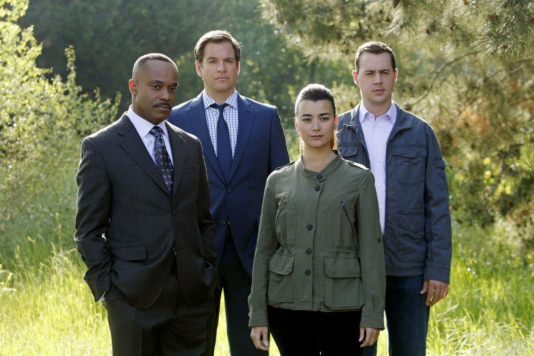 Die internationale Menschenjagd nach Eli Davids Mörder wird zu einer Hexenjagd gegen Gibbs und sein Team: Tony (Michael Weatherly, 2.v.l.), Ziva (Co... - Bildquelle: CBS Television