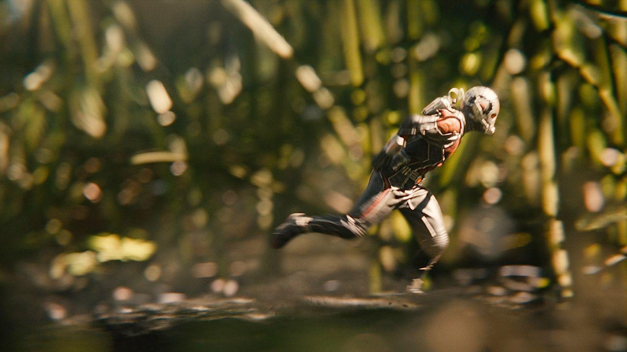Ant-Man-21-Marvel2015 - Bildquelle: Marvel 2015