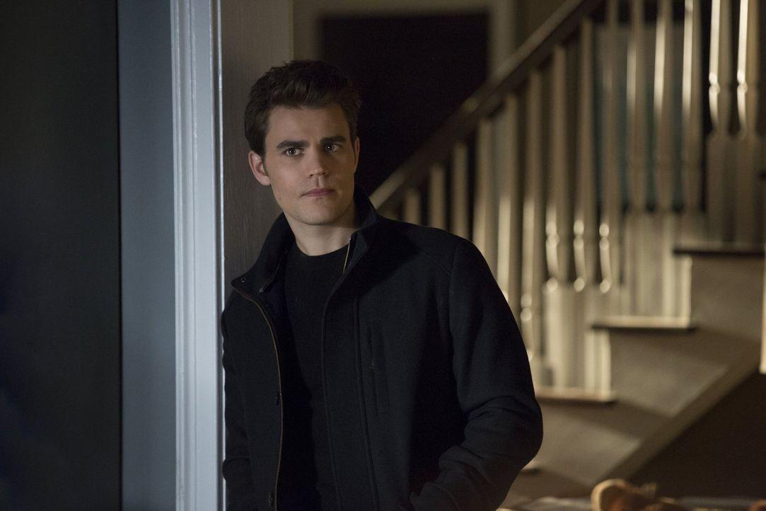 Eigentlich will Stefan (Paul Wesley) die Scherben seines Lebens aufsammeln, doch dann spannt ihn sein Bruder mal wieder in seine Pläne ein ... - Bildquelle: Warner Bros. Entertainment, Inc.