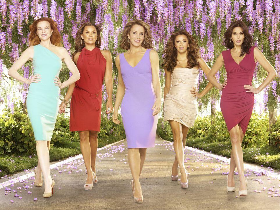 (7. Staffel) - Desperate Housewives: Lynette (Felicity Huffman, M.), Bree (Marcia Cross, l.), Gabrielle (Eva Longoria, 2.v.r.), Susan (Teri Hatcher,... - Bildquelle: ABC Studios