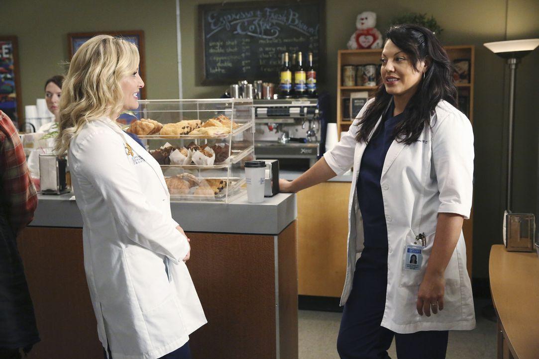Schwere Entscheidung: Callie (Sara Ramirez, r.) und Arizona (Jessica Capshaw, l.) wollen ein Baby. Ob sie sich auf eine Leihmutterschaft einigen kön... - Bildquelle: ABC Studios
