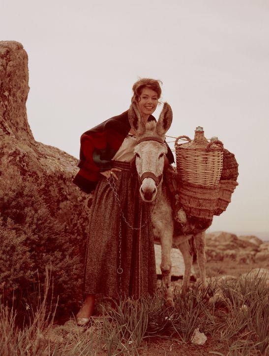 Die schöne Marisol (Marianne Koch) ist auf der Flucht vor dem gewalttätigen Bandenführer Ramon Rocco. - Bildquelle: United Artists