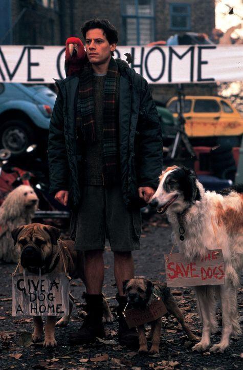 Für seine Hunde macht Kevin Sheperd (Ioan Gruffudd) alles. - Bildquelle: Walt Disney Pictures