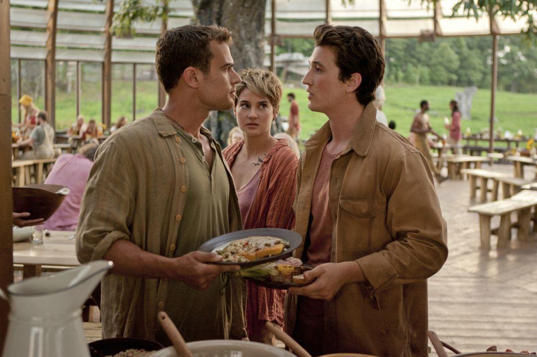 Peter (Miles Teller) ist extrem gefährlich und legt sich immer wieder mit Tris (Shailene Woodley) und Four (Theo James) an. - Bildquelle: 2014 Concorde Filmverleih GmbH