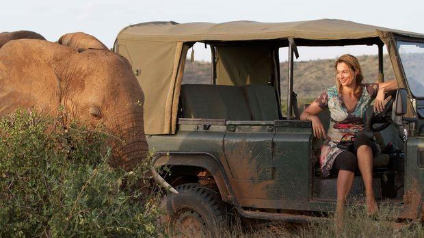 Umweltschützerin Saba Douglas-Hamilton wagt ein sehr persönliches Abenteuer:...