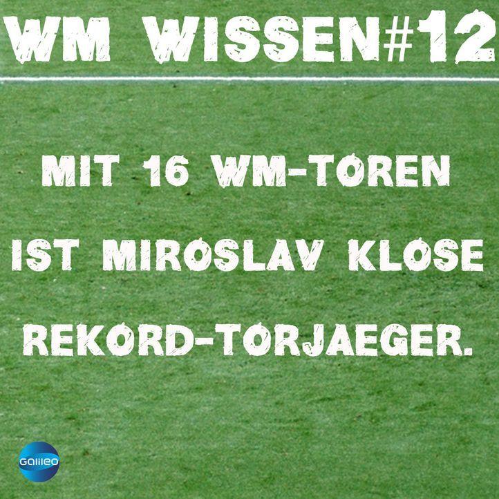wmwissen12