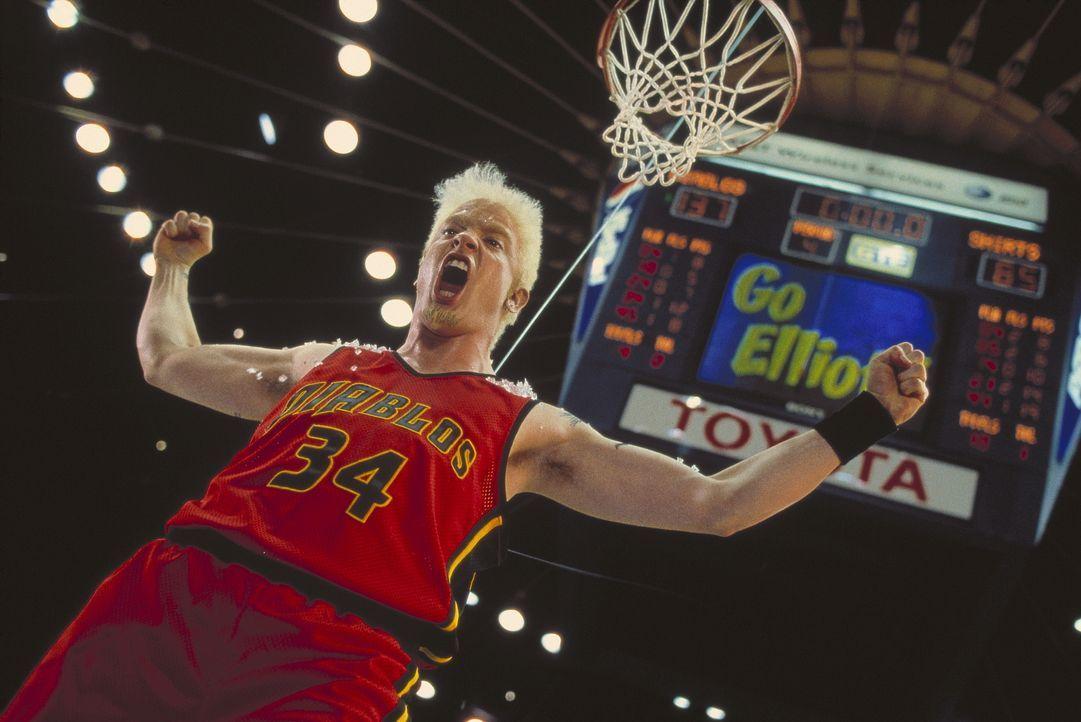 In der Rolle des Superstars der Basketballszene hofft Elliot (Brendan Fraser), endlich von Allison erhört zu werden. Doch nichts ist so einfach, wie... - Bildquelle: The 20th Century Fox Film Corporation