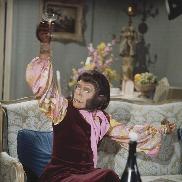 Dr. Cornelius (Roddy McDowall) muss schon bald erkennen, dass das Leben auf der Erde auch so seine Tücken hat ...