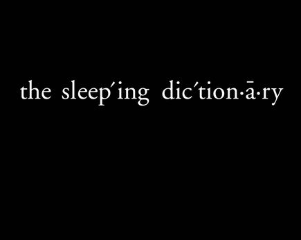 Selima & John - The Sleeping Dictionary - Originaltitel-Logo ... - Bildqu...