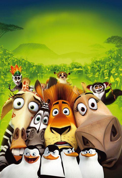 Auf dem Weg nach Hause: Alex (2.v.r.), Gloria (r.), Marty (2.vl.), Melman (l.), die Pinguine (vorne) und die Äffchen (hinten) ... - Bildquelle: (2008) DREAMWORKS ANIMATION LLC. ALL RIGHTS RESERVED.