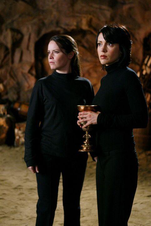 Nachdem immer mehr junge Hexen spurlos verschwinden, machen sich Piper (Holly Marie Combs, l.), Paige (Alyssa Milano, r.) und Leo auf die Suche. Dab... - Bildquelle: Paramount Pictures