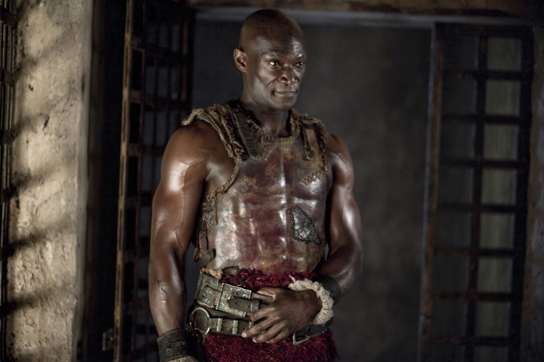 Hat seine Gladiatoren im Griff: Drago (Peter Mensah) ... - Bildquelle: 2010 Starz Entertainment, LLC