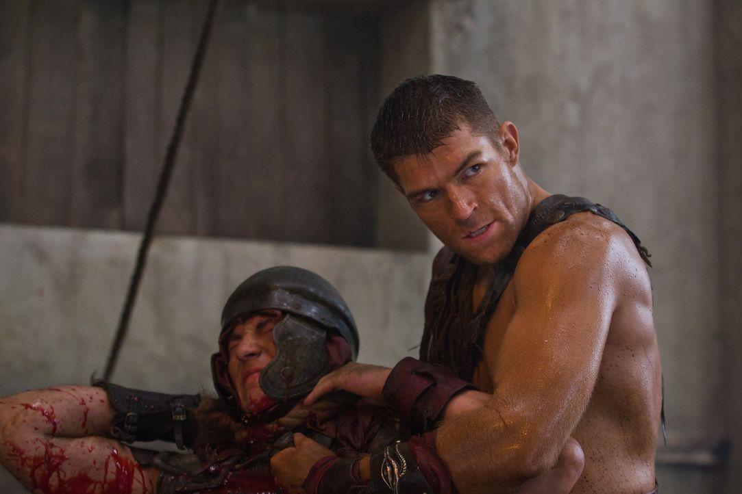 Spartacus (Liam McIntyre, r.) überfällt mit seinen Männern in Neapolis ein Schiff voller cheruskischer Sklaven und befreit sie. Doch schon bald w... - Bildquelle: 2011 Starz Entertainment, LLC. All rights reserved.