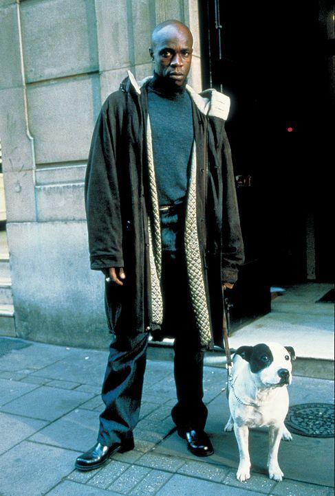 Vincent (Robbie Gee) und sein kleiner Hund sind immer für eine Überraschung gut ... - Bildquelle: 2003 Sony Pictures Television International. All Rights Reserved.