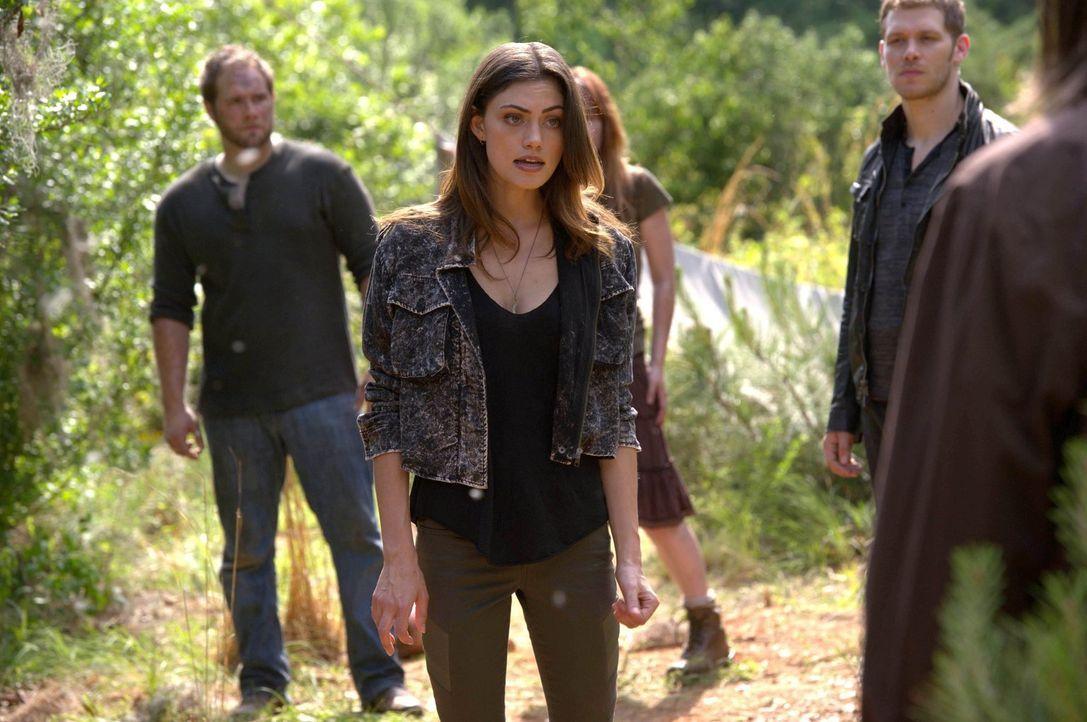 Für Hayley (Phoebe Tonkins, M.) gibt es nur eins: Rache an den Hexen ... - Bildquelle: Warner Bros. Television