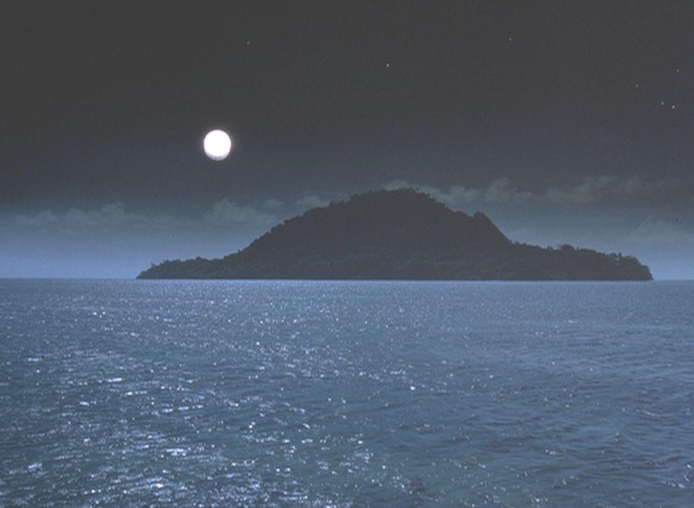 Die Polizei auf Hawaii steht einer Mordserie entgegen, die schier unlösbar scheint ... - Bildquelle: 2004 by Epsilon Motion Pictures