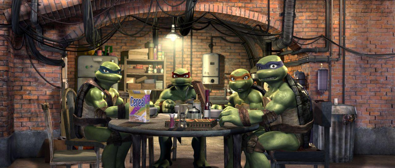 Die mutierten, sprechenden Schildkröten mit den italienischen Namen: Leonardo (l.), Raphael (2. v. l.), Michelangelo (2. v. r.) und Donatello (r.) e... - Bildquelle: TOBIS Filmkunst GmbH