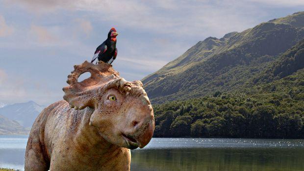 Der Urzeitvogel Alex (oben) erzählt einem ungläubigen Jungen der Gegenwart, d...