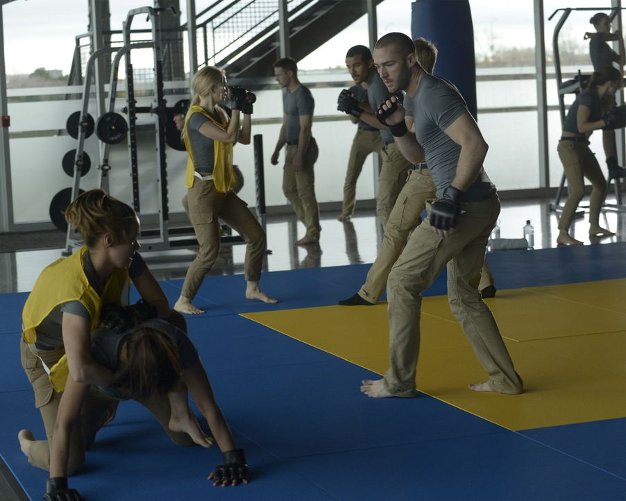 Ein hartes Training wartet auf Shelby (Johanna Braddy, 3.v.l.), Brandon (Jacob Artist, 2.v.r.), Natalie (Anabelle Acosta, l.), Alex (Priyanka Chopra... - Bildquelle: Philippe Bosse 2015 ABC Studios