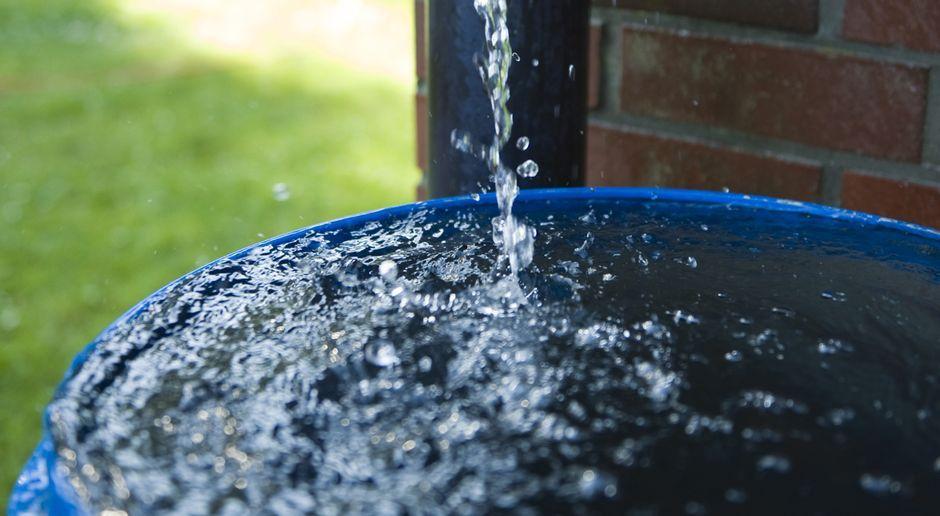 Regenwasser Sammeln Sat 1 Ratgeber