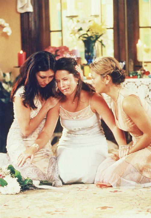 Piper (Holly Marie Combs, M.) ist völlig am Boden zerstört, doch Phoebe (Alyssa Milano, r.) und Prue (Shannen Doherty, l.) stehen ihr bei. - Bildquelle: Paramount Pictures
