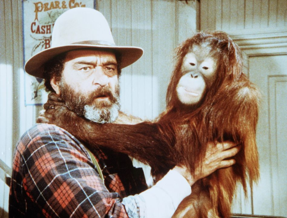 Edwards (Victor French) hat das Orang-Utan-Baby Blanche in Olesons Laden gefunden. - Bildquelle: Worldvision