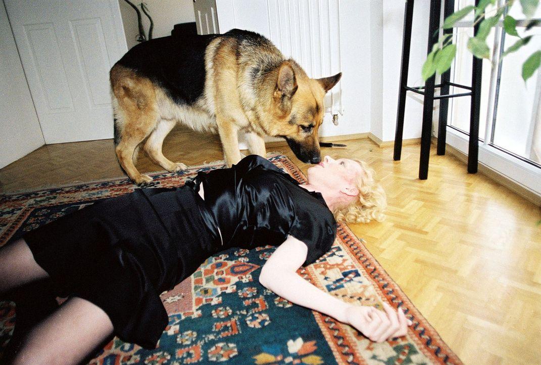 Rex findet Beatrix (Sunnyi Melles), die niedergeschlagen wurde ... - Bildquelle: Sat.1