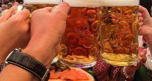 So wird das Bier im Festzelt getrunken. Sammler kaufen sich aber jedes Jahr a...