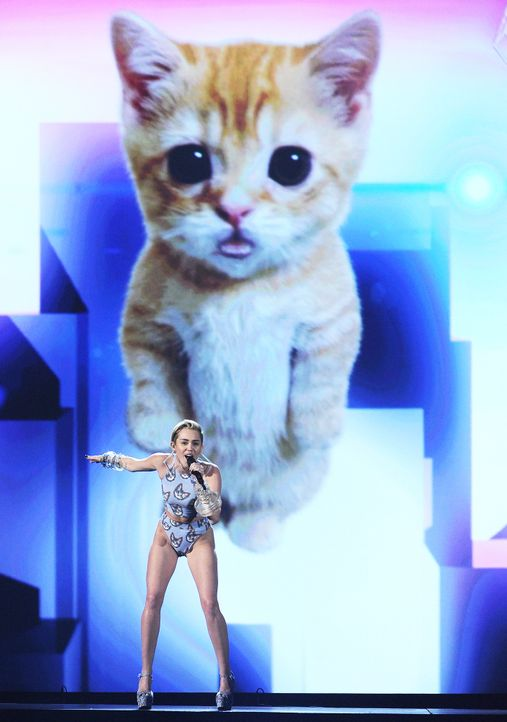 American-Music-Awards-13-11-24-19-AFP - Bildquelle: AFP