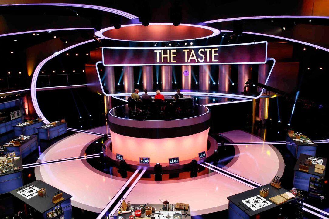 """Hochspannung im Studio von """"The Taste"""": Tim Mälzer, Frank Rosin, Alexander Herrmann und Lea Linster suchen bei """"The Taste"""" Deutschlands besten Koch... - Bildquelle: Guido Engels SAT.1"""