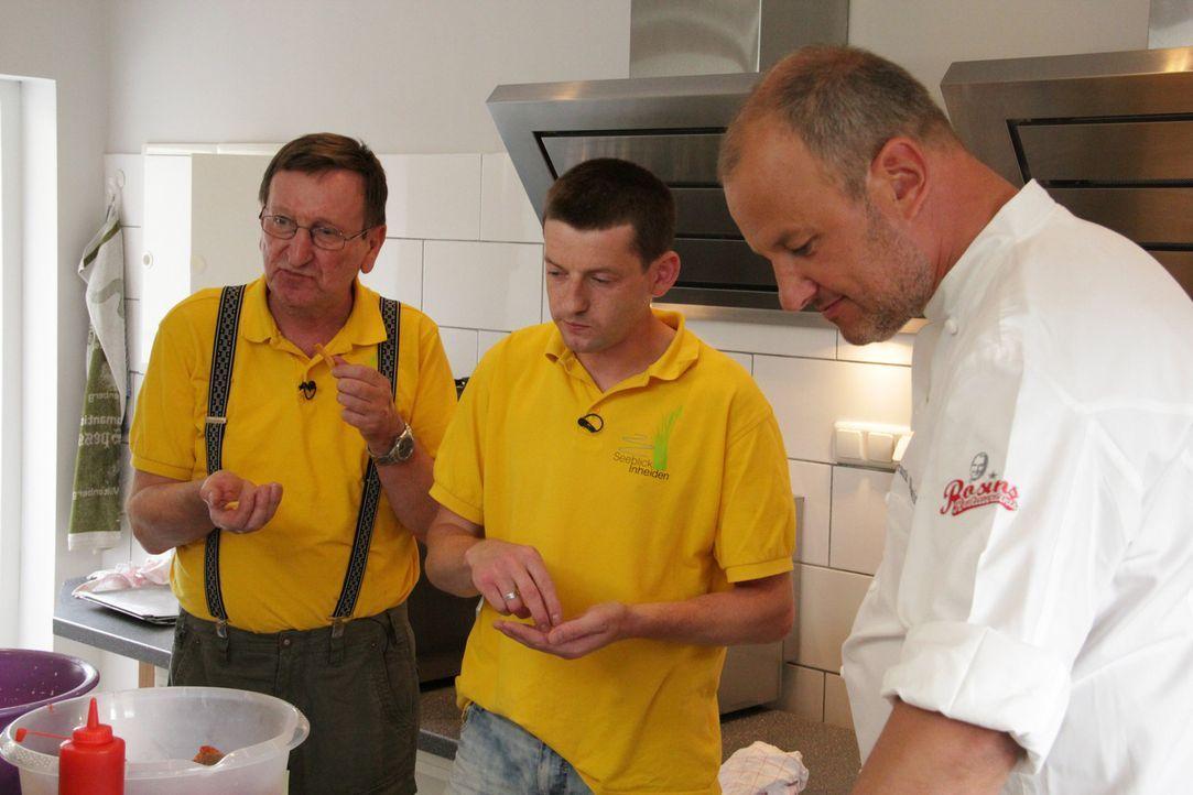 """Wird es ihnen gemeinsam mit Sternekoch Frank Rosin (r.) gelingen, das Restaurant """"Seeblick Inheiden"""" ihres Freundes Marcus Schmidt wieder in die sch... - Bildquelle: kabel eins"""