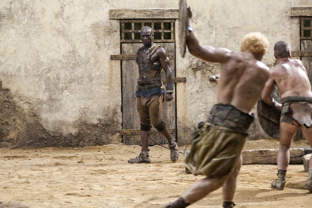 Der Trainer der Gladiatoren, Drago (Peter Mensah, hinten), muss ein strenges Regiment führen, damit seine Kämpfer überhaupt eine kleine Überlebensch... - Bildquelle: 2010 Starz Entertainment, LLC