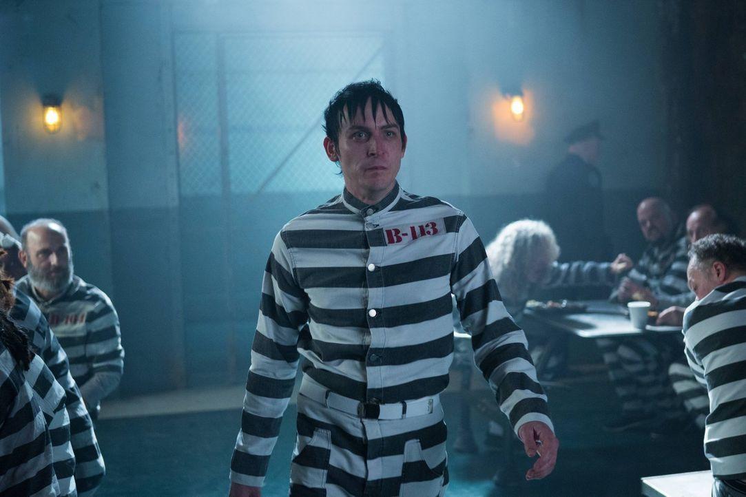 Penguin (Robin Lord Taylor) wird gefasst und für den Mord an Galavan festgenommen und nach Arkham gebracht ... - Bildquelle: Warner Brothers