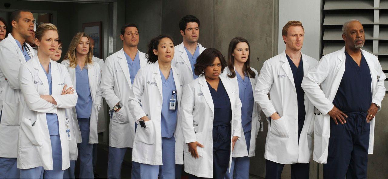 Ein Notfall-Patient der ganz besonderen Art wird ins Krankenhaus eingeliefert: (v.l.n.r.) Jackson (Jesse Williams), Lexie (Chyler Leigh), Reed (Nora... - Bildquelle: Touchstone Television