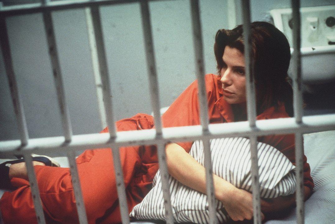 Auf Leben und Tod den eiskalten Killern ausgeliefert: Angela Bennett (Sandra Bullock) ... - Bildquelle: Columbia Pictures Corporation