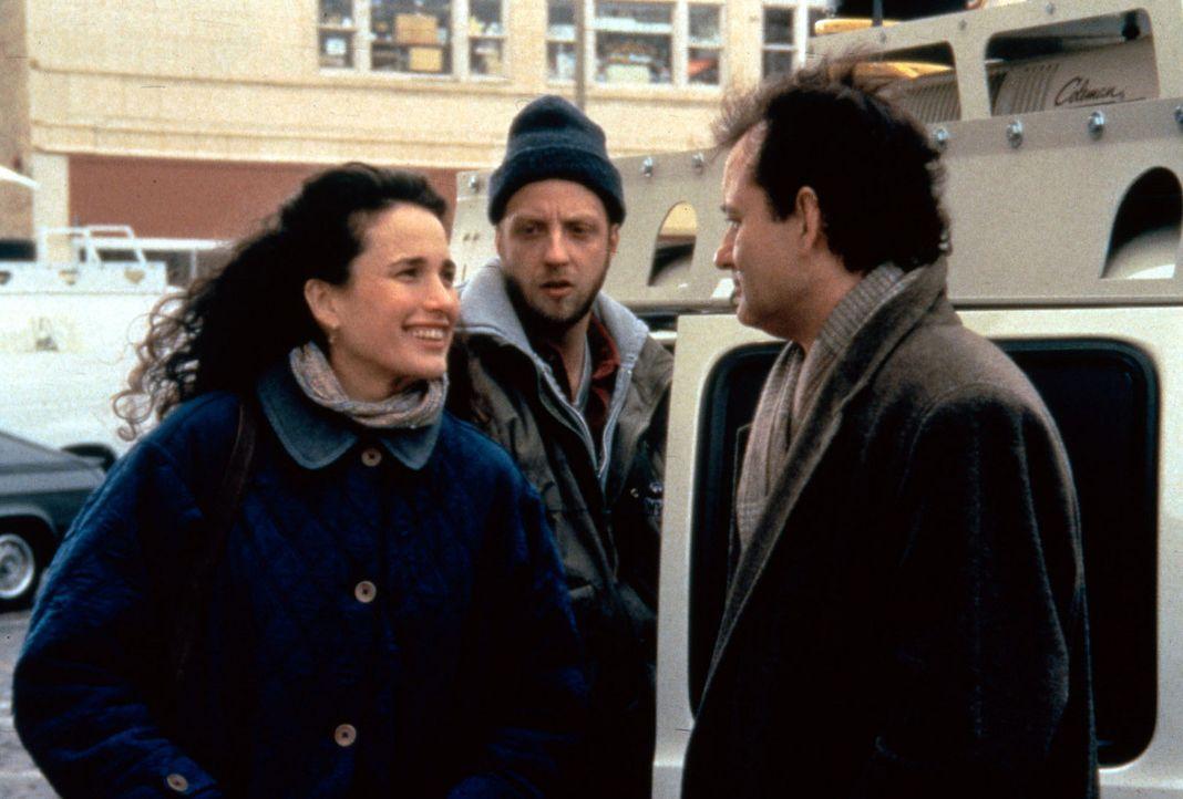 Rita (Andie MacDowell, l.), Larry (Chris Elliott, M.) und Phil (Bill Murray, r.) machen sich auf den Weg nach Punxutawney ... - Bildquelle: Columbia TriStar