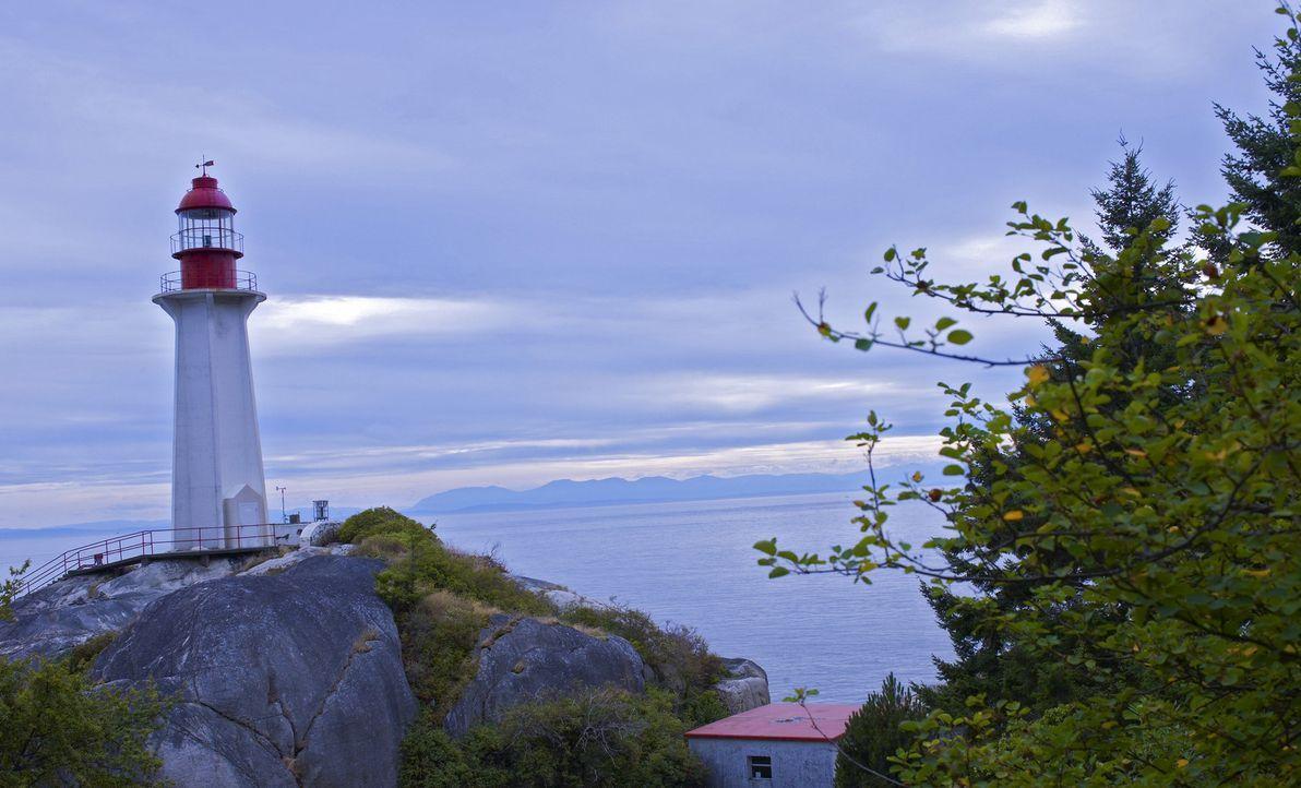 (1. Staffel) - Harper's Island ist eine beschauliche Insel bei Washington. Schon vor vielen Jahren trieb hier ein Mörder sein Unwesen und jetzt sch... - Bildquelle: 2009 CBS Studios Inc. All Rights Reserved.