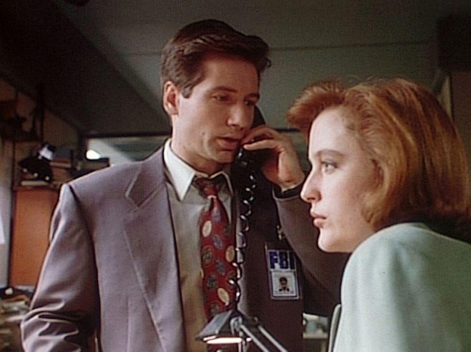 Scully (Gillian Anderson, r.) wird Zeugin, als Mulder (David Duchovny, l.) von einem Mörder angerufen wird, der eigentlich vor vier Jahren gestorben... - Bildquelle: TM +   Twentieth Century Fox Film Corporation. All Rights Reserved.