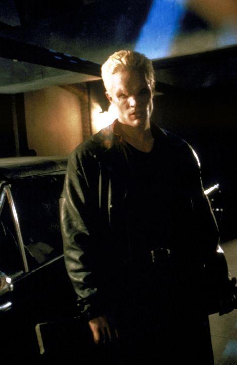 Ein alter Bekannter taucht in Los Angeles auf: Spike (James Marsters). Er ist auf der Suche nach dem Ring von Amara. - Bildquelle: TM +   2000 Twentieth Century Fox Film Corporation. All Rights Reserved.