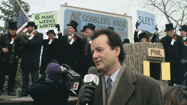 Der zynische Fernseh-Wetterfrosch Phil (Bill Murray, M.) berichtet über den t...