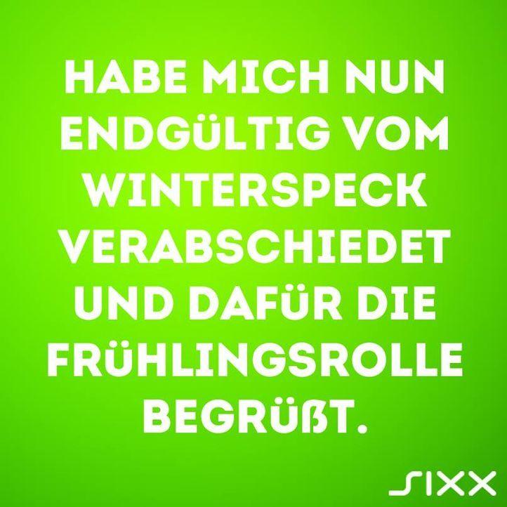 Visual Statements: Frühlingsrolle - Bildquelle: sixx