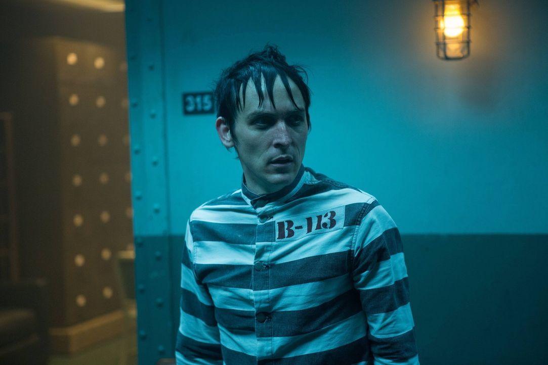 Nach alldem was geschehen ist, wird Penguin (Robin Lord Taylor) gefasst und nach Arkham gebracht. Doch wie wird es dort mit ihm weitergehen? - Bildquelle: Warner Brothers