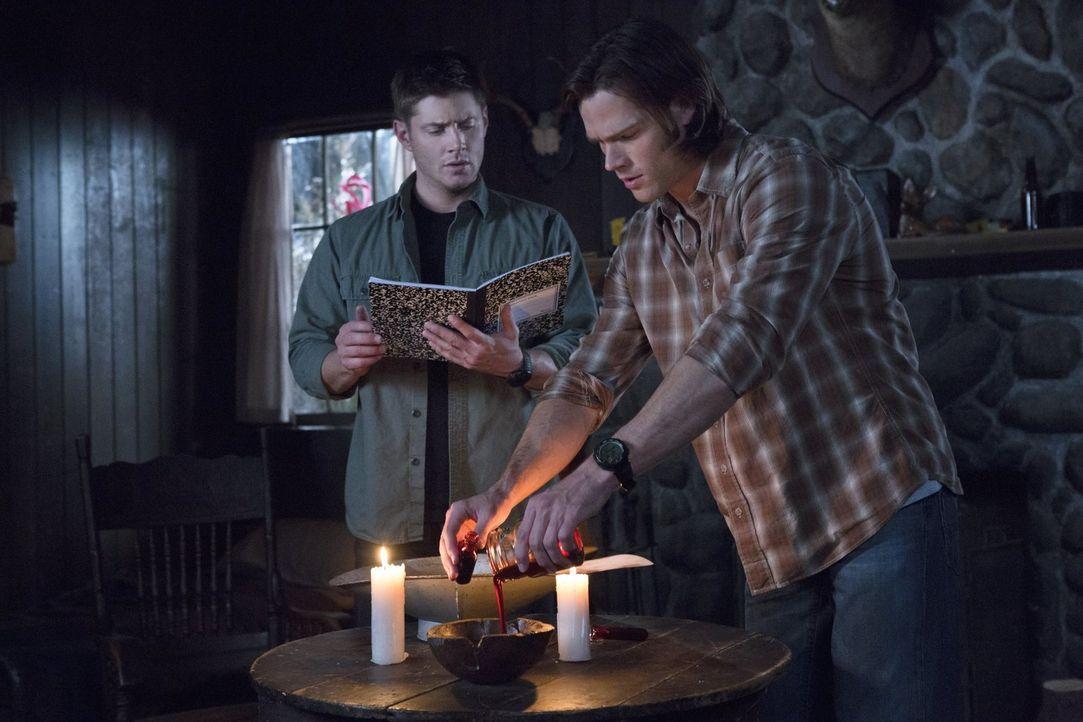 Sam (Jared Padalecki, r.) und Dean (Jensen Ackles, l.) haben jetzt die Blutampullen von den entsprechenden Personen, um ihre Rettungsaktion durchfüh... - Bildquelle: Warner Bros. Television
