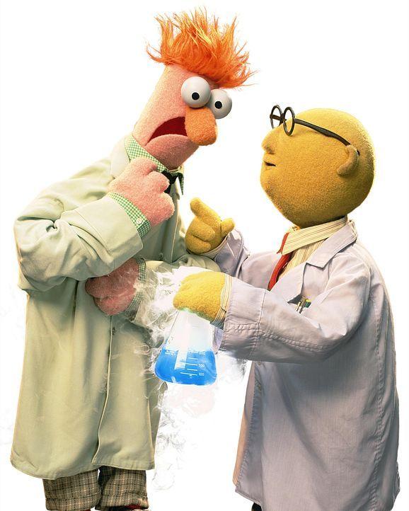 muppets-freisteller-01-disneyjpg 1520 x 1900 - Bildquelle: Disney