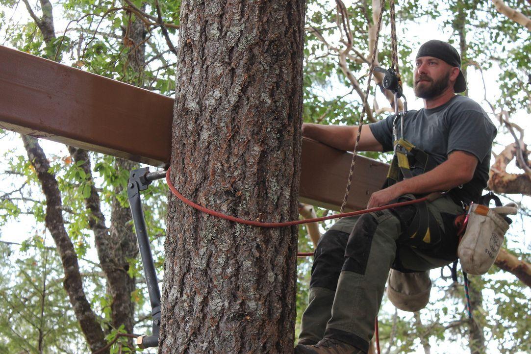Dieses Mal geht es für die Treehouse Guys und Ka-V mal wieder ganz besonders hoch hinaus: Um ein Baumhaus-Traum im Western-Look zu zaubern und Micha... - Bildquelle: 2016, DIY Network/Scripps Networks, LLC. All Rights Reserved.
