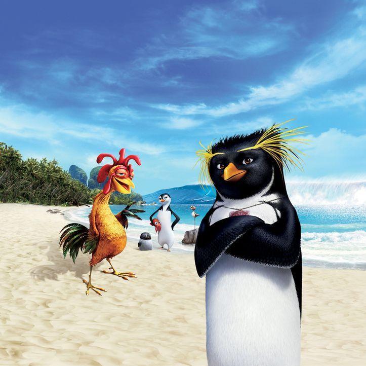 Pinguin Cody Maverick verlässt seine Heimat Shiverpool, um die Weltmeisterschaft im Surfen zu gewinnen. Doch das ist  gar nicht so einfach ... - Bildquelle: 2007 Sony Pictures Animation Inc. All Rights Reserved.