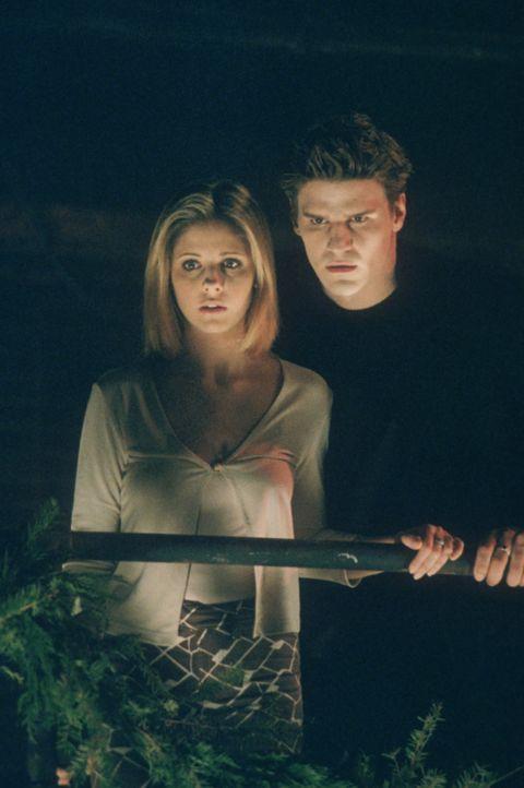 Buffy (Sarah Michelle Gellar, l.) und Angel (David Boreanaz, r.) wollen verhindern, dass der Dämon, der Richter genannt wird, zum Leben erweckt wird... - Bildquelle: TM +   2000 Twentieth Century Fox Film Corporation. All Rights Reserved.