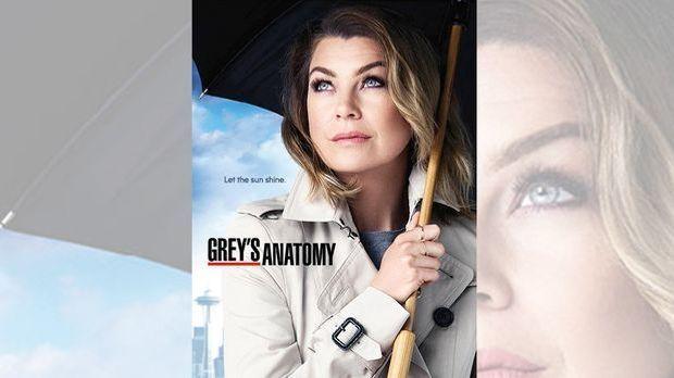 Greys Anatomy Prosieben Staffel 12