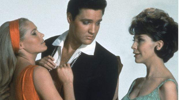 Gestrandet in Acapulco, steht Mike Windgren (Elvis Presley, M.) schnell zwisc...