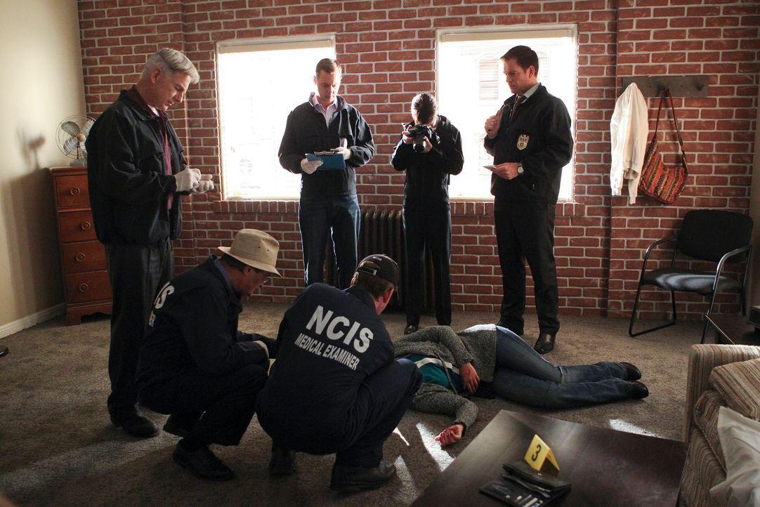 Müssen einen neuen Mord aufklären: Gibbs (Mark Harmon, l.), Ducky (David McCallum, 2.v.l.), Jimmy (Brian Dietzen, 3.v.r.), McGee (Sean Murray, 3.v.l... - Bildquelle: CBS Television
